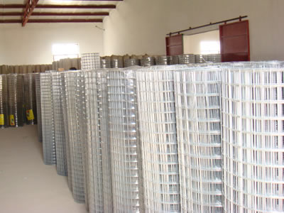 Galvanized Welded Wire Mesh - Anping Deping Wire Mesh Manufacture Co ...